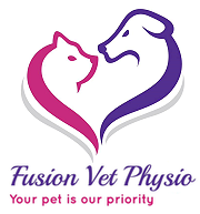Click to visit the Fusion Physio website